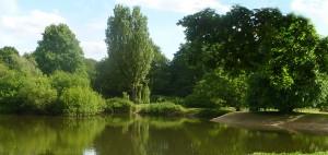7 Islands pond